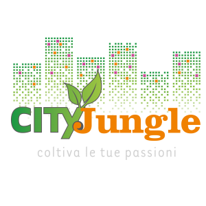 city jungle udine